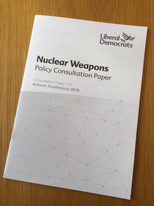 nuclear weapons essay thesis Read the nuclear proliferation free essay and over 88,000 other research documents the nuclear proliferation during our oral presentation, we have shown to the.